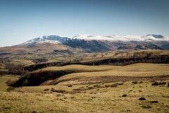 Snöig berg för landskap i sjöområdet Royaltyfri Foto