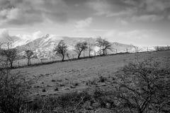 Snöig berg för svartvitt landskap i sjöområdet Fotografering för Bildbyråer