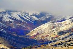 Snöig berg för vinter med nedgången Autumn Red Maple Trees Royaltyfria Bilder
