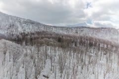 Snöig berg landskap, Japan Arkivfoto