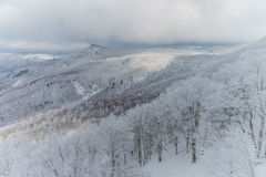 Snöig berg landskap, Japan Royaltyfri Bild