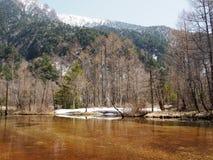 Snöig berg med den främsta floden Arkivbilder