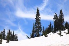snöig bergkant Royaltyfria Foton