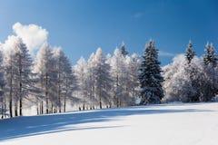 Snöig berglandskap Arkivfoto