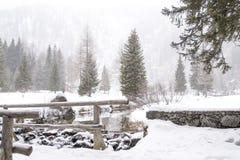 Snöig berglandskap med floden royaltyfri foto