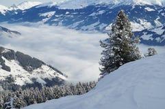 Snöig bergskedja med den dimmiga dalen och träd i förgrund Royaltyfria Bilder