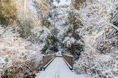 Snöig bro Royaltyfri Foto