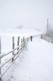 Snöig bygdväg royaltyfri fotografi