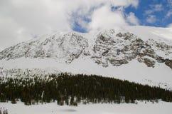 Snöig Colorado landskap Royaltyfri Bild