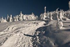Snöig dag för vinter i Moravskoslezske Beskydy Arkivbilder