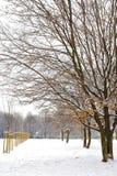 Snöig dag i parken Arkivfoton