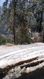 Snöig dagar Arkivfoto