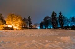 Snöig dammträd Royaltyfria Bilder