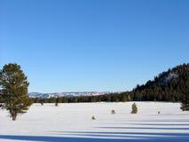 Snöig fält i Utah Fotografering för Bildbyråer