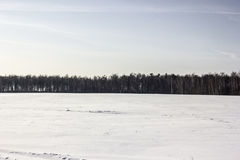 Snöig fält och himmel arkivbild