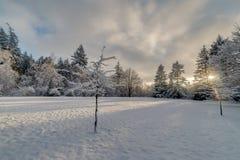 Snöig fält på solnedgången Arkivfoton