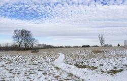 Snöig fältbana och makrillmolnhimmel royaltyfria foton