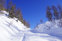 Snöig fjällängar Arkivbilder
