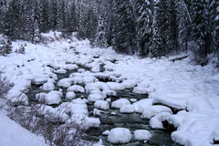 snöig flod Arkivbild