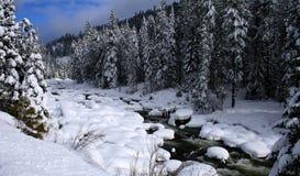 snöig flod 8 Arkivfoto