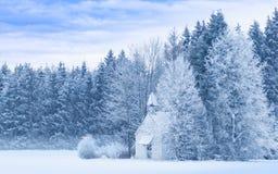 Snöig frostig skog för idylliskt fridfullt panorama- vinterlandskap arkivfoton