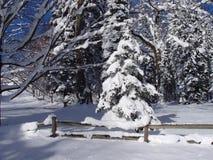 snöig gård Fotografering för Bildbyråer