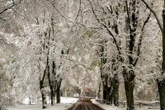 Snöig gata Arkivbilder