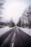 Snöig gata Royaltyfria Bilder