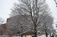 Snöig gata efter vinterstorm i Boston, USA på December 11, 2016 Arkivbild