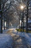 Snöig gata i Papendrecht, Nederländerna Fotografering för Bildbyråer