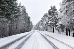 Snöig gata till och med skog Arkivbilder