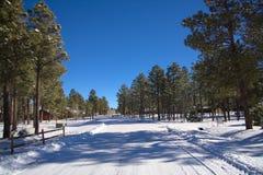 Snöig gränd Arkivbild