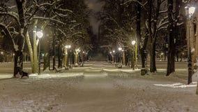 Snöig gränd i `en för parkera`-Borisovata trädgård i Sofia lökformig Arkivbilder
