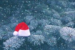 Snöig granfilialer med röda Santa Hat arkivbilder