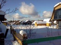 Snöig hus i förorts- by Sena soliga vinterdagar Arkivfoto