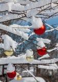 Snöig julbollar Royaltyfri Bild