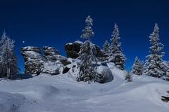 Sn?ig jullandskap i natt Vinterskog i sn? Fullm?ne och stj?rnklar himmel fotografering för bildbyråer