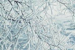 Snöig julsaga Royaltyfria Foton