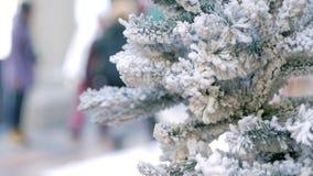 Snöig julträd i varuhus lager videofilmer
