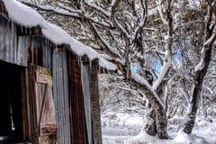 Snöig kabin Arkivfoto