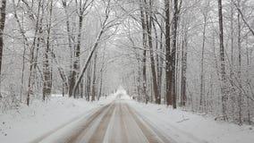 Snöig kall Februari morgon i Michigan Royaltyfria Bilder