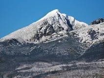 Snöig Krivan i höga Tatras Fotografering för Bildbyråer