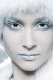 snöig kvinna Royaltyfri Bild