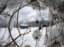 Snöig ladugård Royaltyfria Foton
