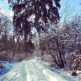Snöig land Arkivbild