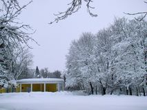 Snöig landcsapesikt för vinter Fotografering för Bildbyråer