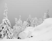 snöig landskap Arkivbilder