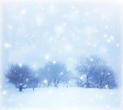Snöig landskap Royaltyfri Fotografi