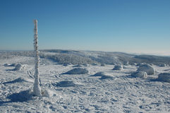Snöig landskap royaltyfria bilder