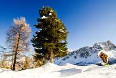 Snöig landskap av Dolomitesberg under vinter Arkivbild
